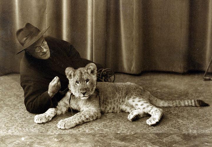 Der Löwe im Kloster
