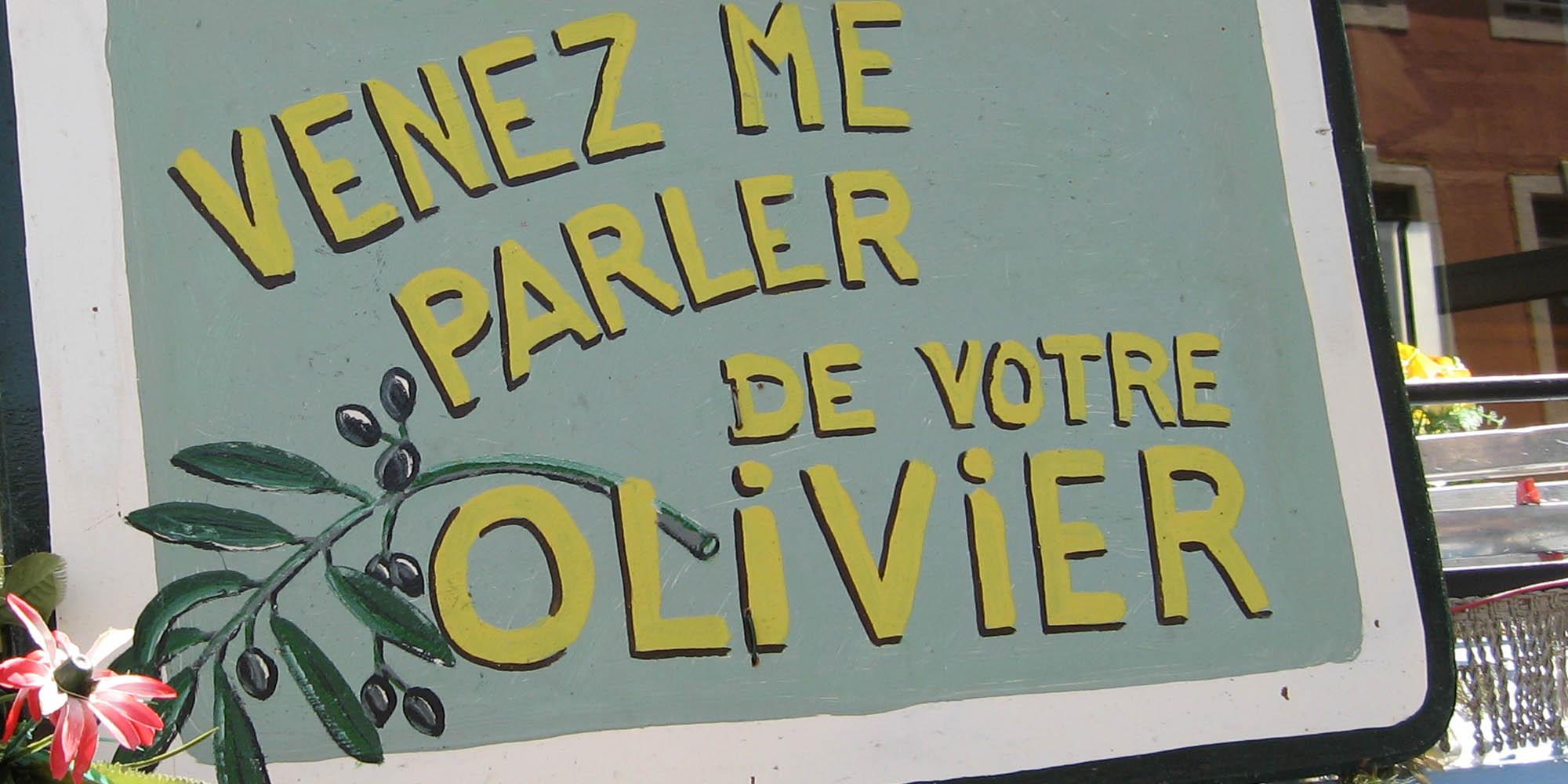 midi-oliven-consult-detail.jpg