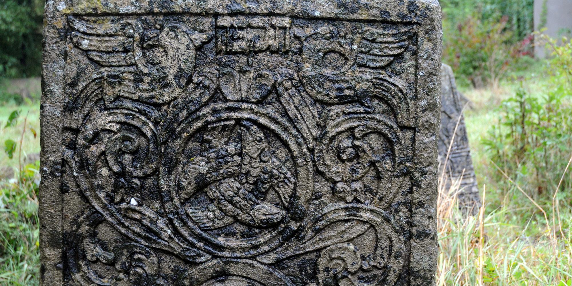 sadgora-friedhof-fischdetail.jpg