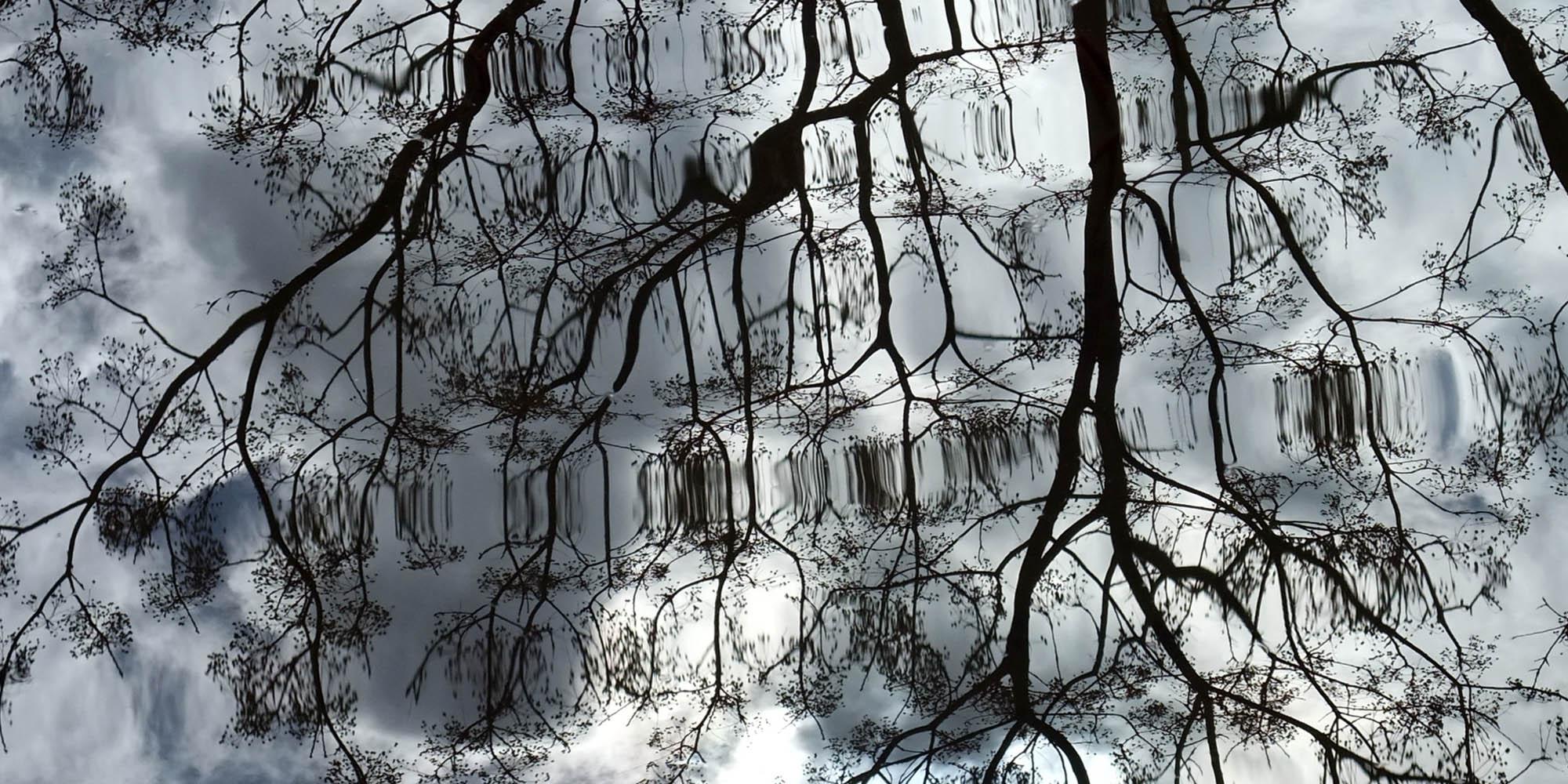 reflexions.jpg