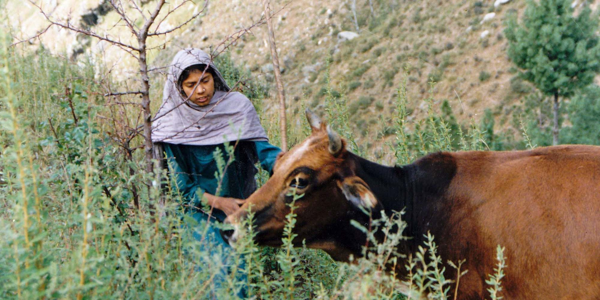 swat-valley-girl-a-pano.jpg